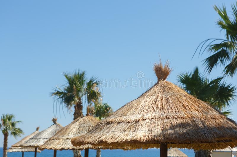 Straw umbrellas with palm trees on the beach against the sea and sky. Large straw umbrellas with palm trees on the beach against the sea and sky stock images