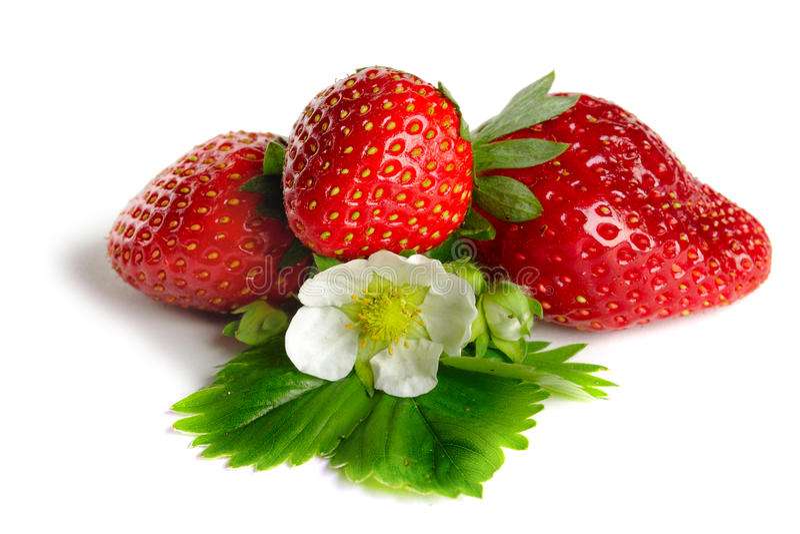 Strawberrie imagem de stock royalty free