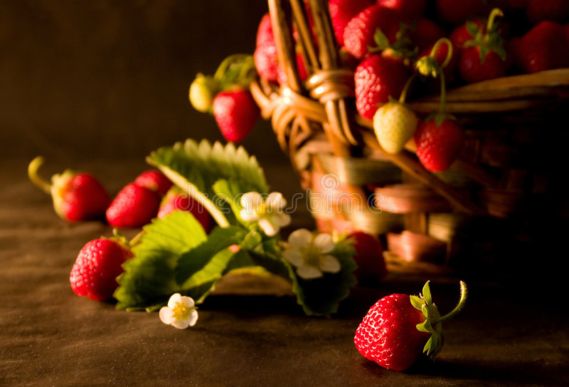 Strawberries (1) stock image