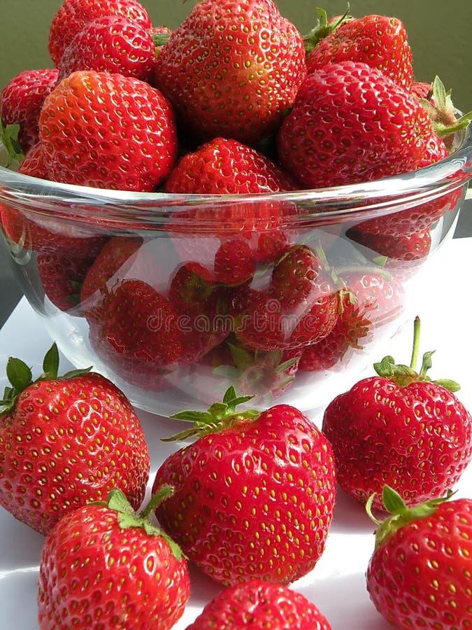 Strawberries royalty free stock photo