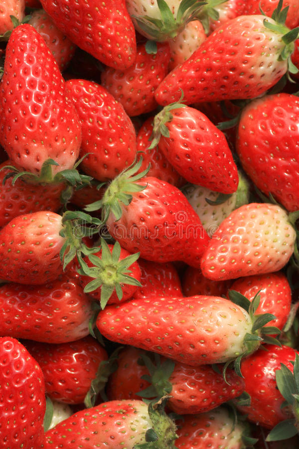 Free Strawberries Stock Photos - 13621283