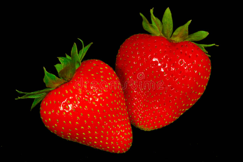 Download Strawberries stock image. Image of eating, black, cream - 14426661