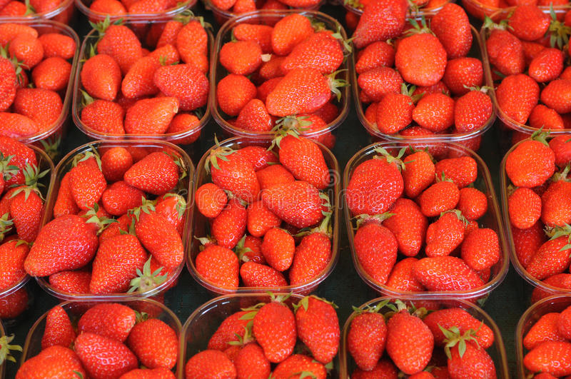 Download Strawberries stock photo. Image of cooking, summer, healthy - 14850938