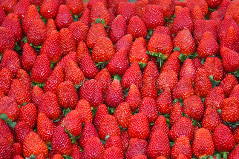 Download Strawberries stock photo. Image of ripe, summer, food - 14861918
