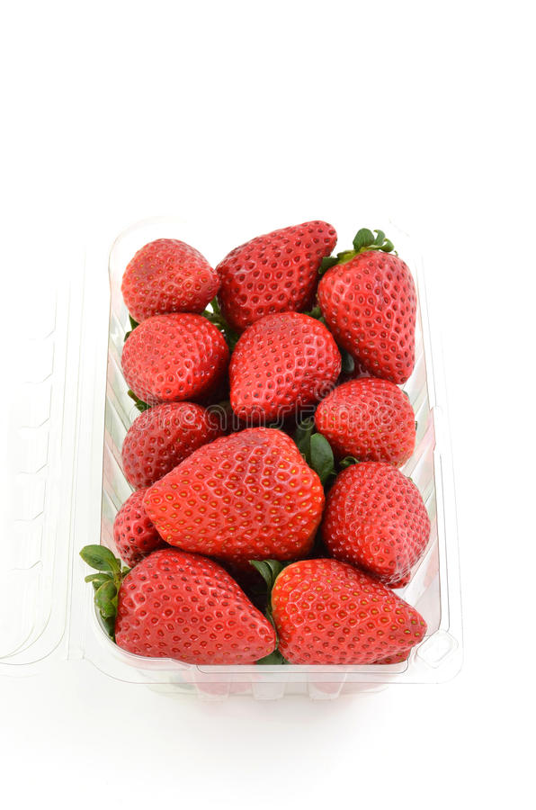 Download Strawberries stock photo. Image of fresh, healthy, fruit - 23141136