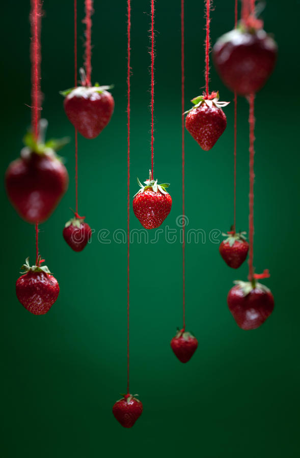 Download Strawberries stock photo. Image of organic, diet, healthy - 25128184