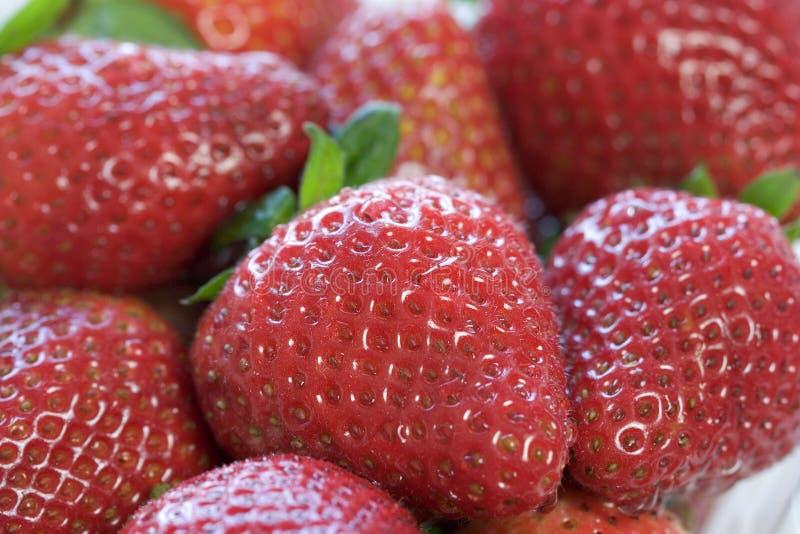 Download Strawberries stock photo. Image of strawberries, fruit - 513336
