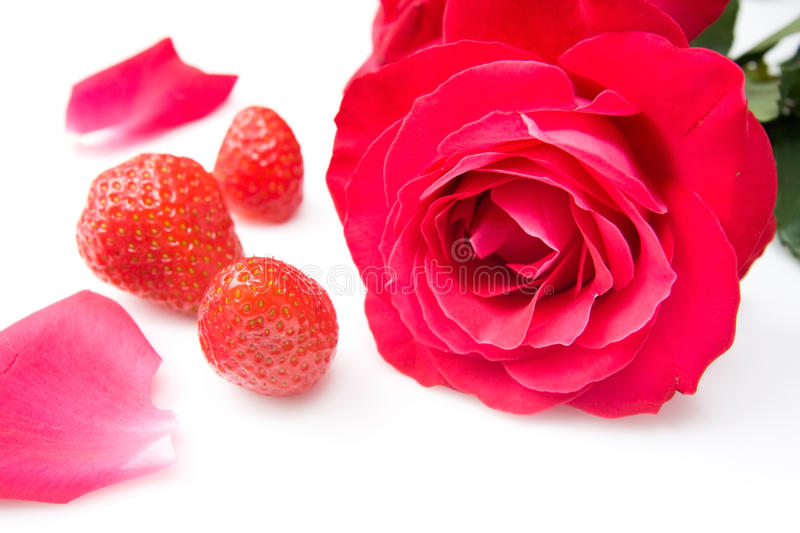 Download Strawberries stock image. Image of flowers, care, flower - 9628919