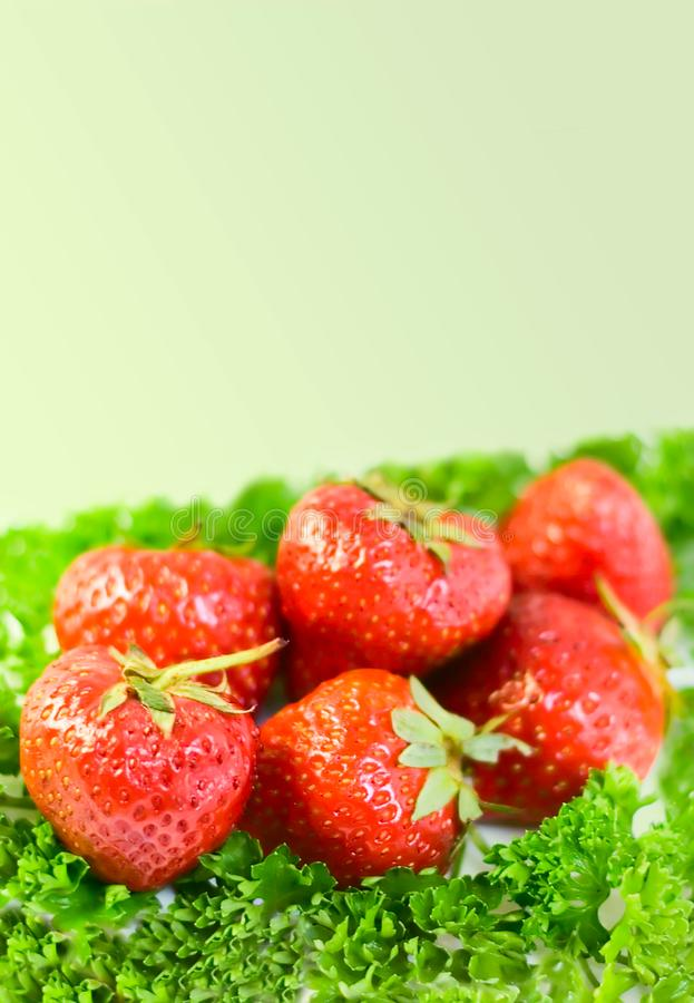 Download Strawberries background stock photo. Image of fruitage - 6803944