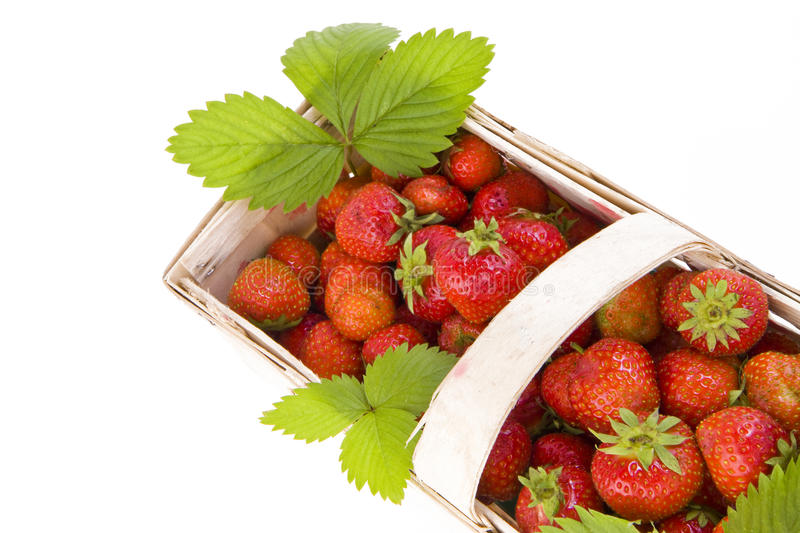 Download Strawberries In The Basket Royalty Free Stock Photography - Image: 14946917
