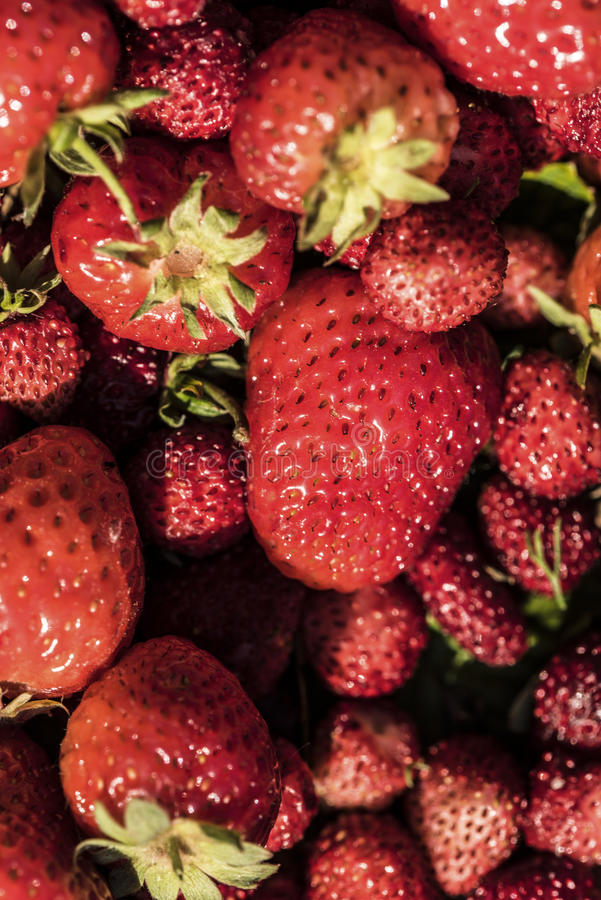 Strawberries on a basket royalty free stock image