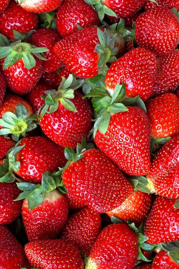 Download Strawberries stock image. Image of juicy, food, frame - 31230971