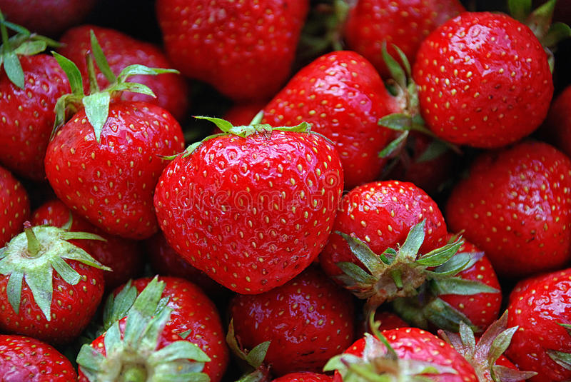 Download Strawberries stock image. Image of fruits, sweet, healty - 34368617