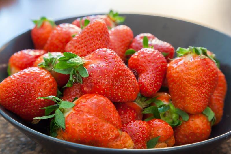 Strawberries - close up shot. Shot of strawberries - close up shot royalty free stock photo