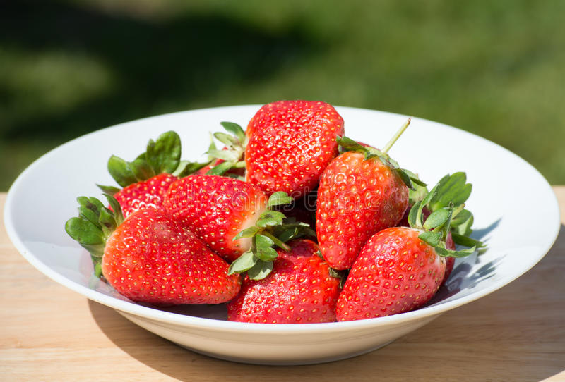 Download Strawberries - close up stock photo. Image of bowl, photographed - 71127996