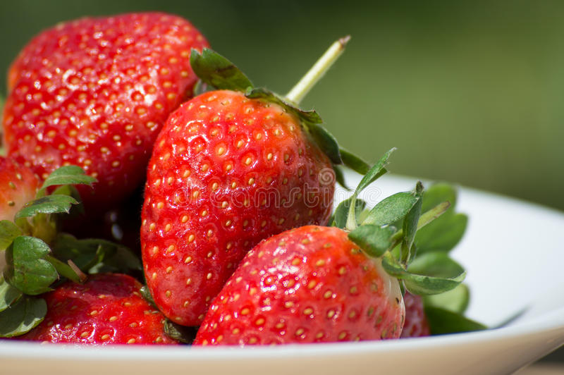 Download Strawberries - close up stock image. Image of bowl, photographed - 71129803