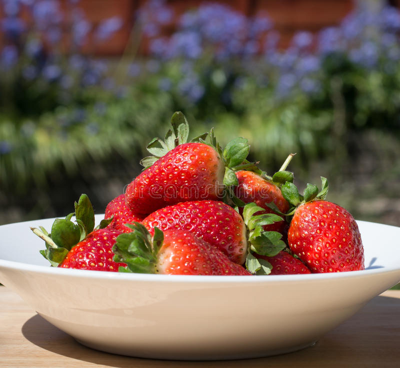 Download Strawberries - close up stock image. Image of photographed - 71131953
