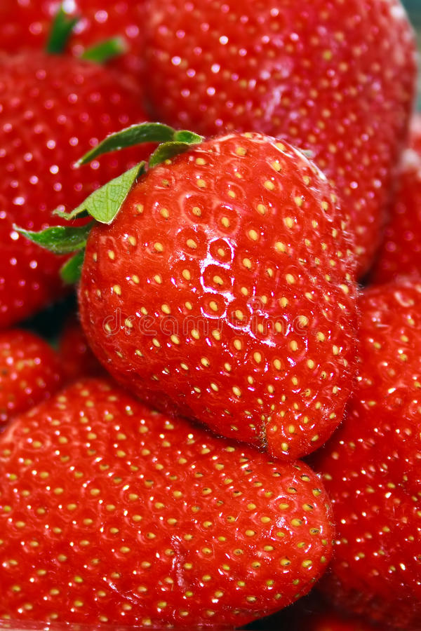 Download Strawberries 1 stock photo. Image of above, close, objects - 30862340