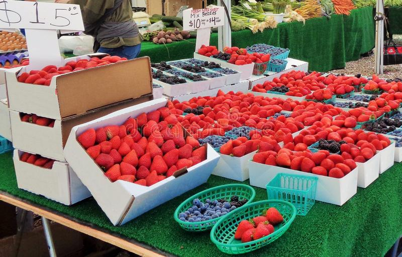 Strawberries on Display at a Farmer`s Market. This is an image of boxes of strawberries and blueberries on display in a small town Farmer`s Market.  There are royalty free stock photo