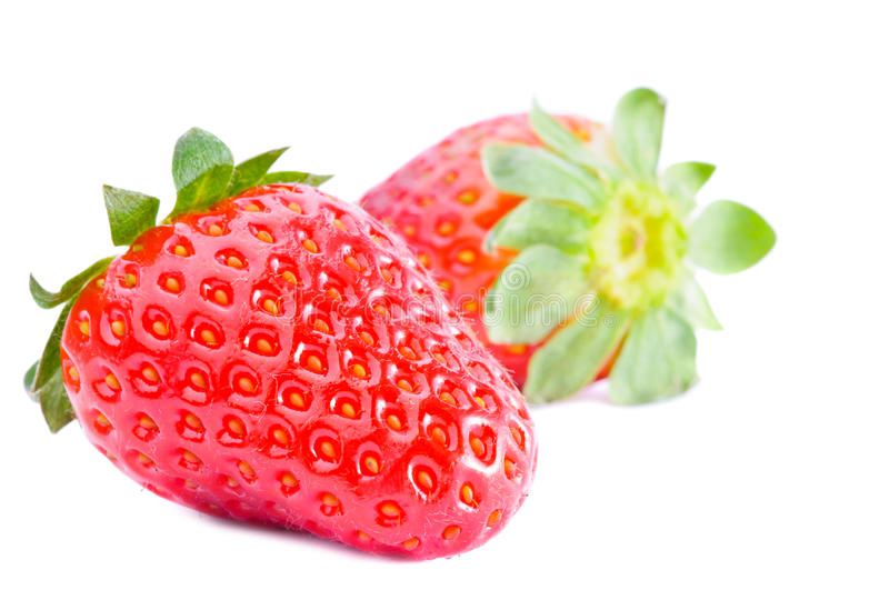Strawberries fruits isolated royalty free stock photos