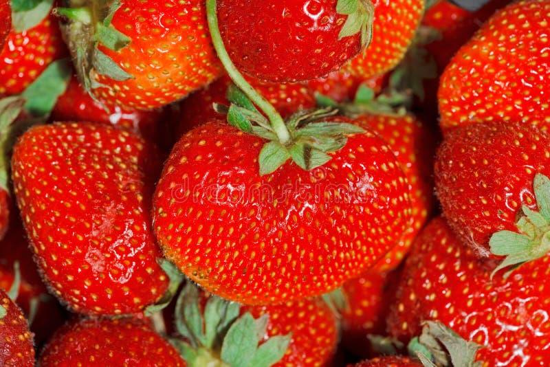 Strawberries Full Frame Background