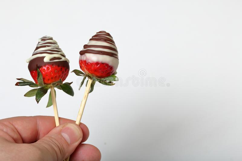 Strawberries glazed in black and white chocolate. Dressed on wooden sticks. A man holds them in his hand. On a white background.  royalty free stock photo