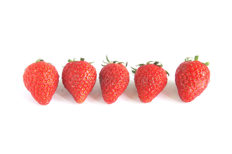 Strawberries Grouped in a Row. Isolated on a white background stock image