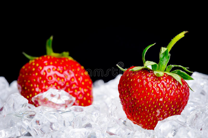 Download Strawberries in ice stock photo. Image of stack, freezing - 25337126