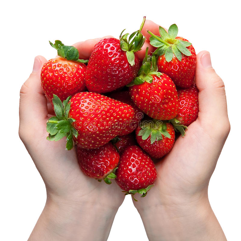 Free Strawberries In Hands Stock Photography - 9610102