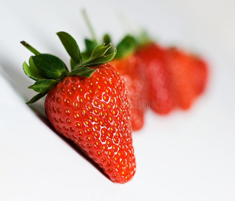 Strawberries in a line royalty free stock image