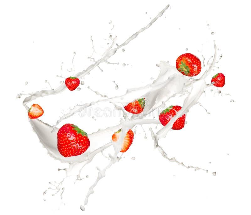 Strawberries In Milk Splash Royalty Free Stock Photo