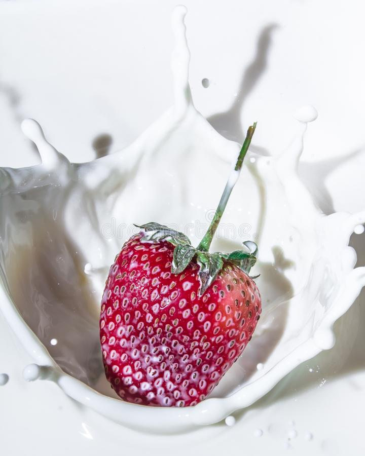 Strawberries and milk. Sweet and delicious still life. Subject photo. advertising photography. strawberries and milk. red on white. frozen movement stock images