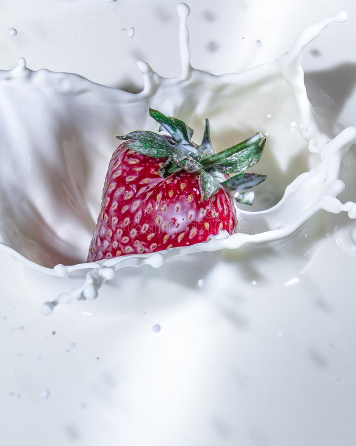 Strawberries and milk. Sweet and delicious still life. Subject photo. advertising photography. strawberries and milk. red on white. frozen movement stock image