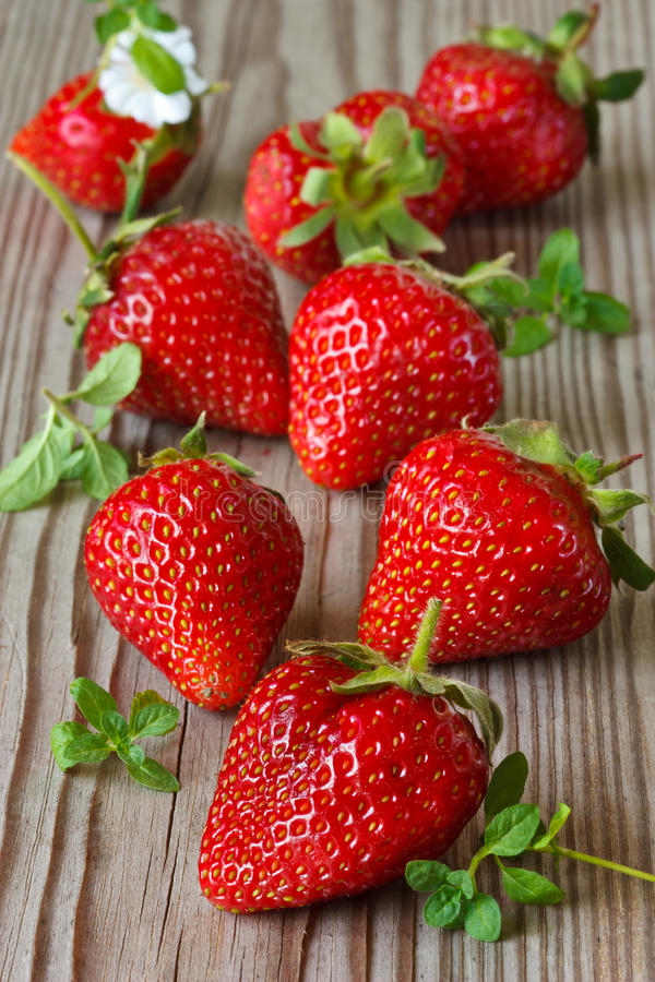 Strawberries and mint. royalty free stock image