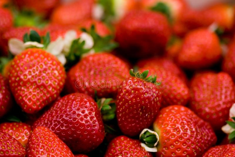 Strawberries. Organic strawberries in a market place. Natural fruit royalty free stock images