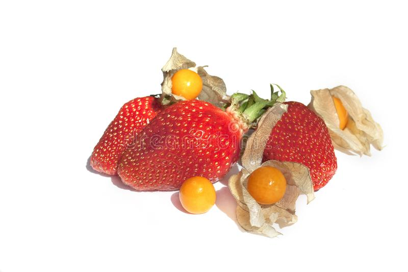 Download Strawberries And Physalis Isolated On White Stock Photo - Image of meal, climate: 14029094
