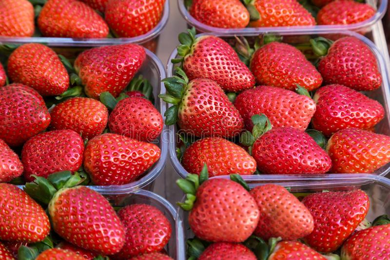 Strawberries in plastic baskets at the market with a soft focus field stock image