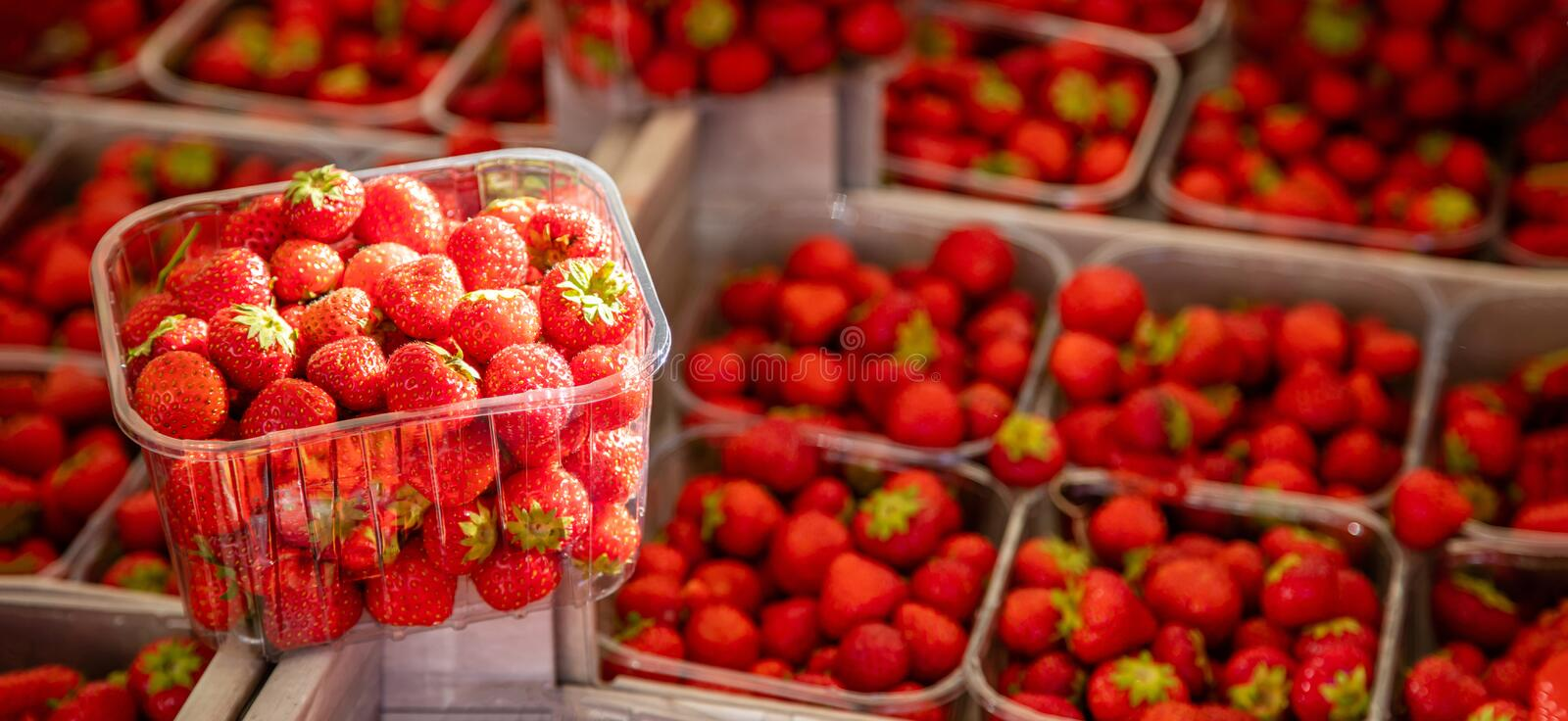 Strawberries in plastic containers at farmers market, background, texture. Strawberries in a plastic container at farmers market, blur strawberries background royalty free stock image