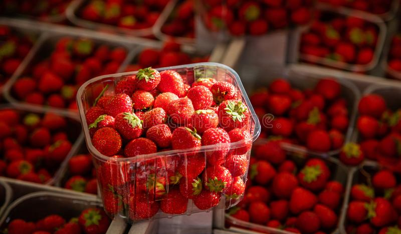 Strawberries in plastic containers at farmers market, background, texture. Strawberries in a plastic container at farmers market, blur strawberries background royalty free stock photos