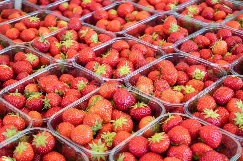 Strawberries in plastic containers at farmers market, background, texture. Close up view royalty free stock photography