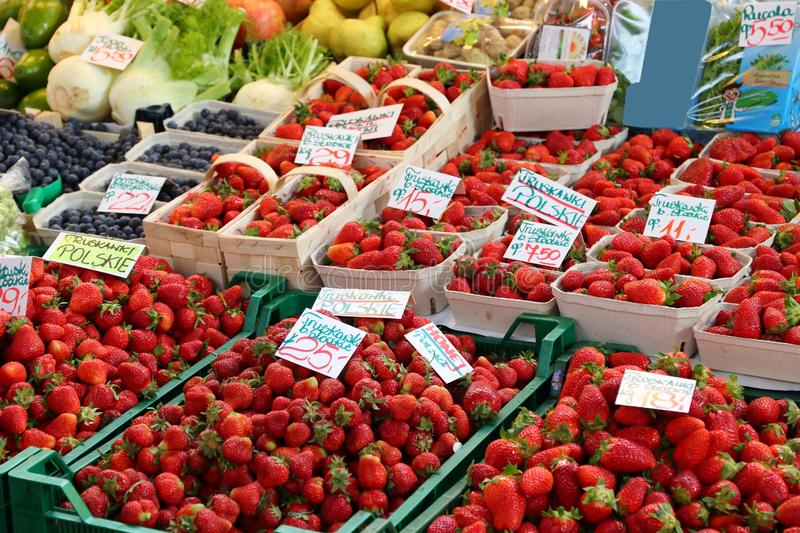 Strawberries in Poland royalty free stock images