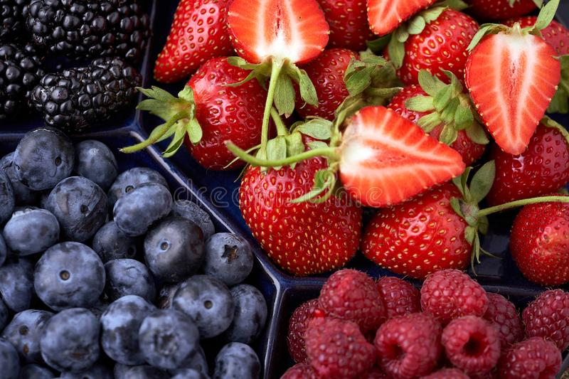 Strawberries, raspberries, blueberries, blackberries on a separate dish close-up on a solid concrete background. Healthy eating. Vegan food. View from above royalty free stock images