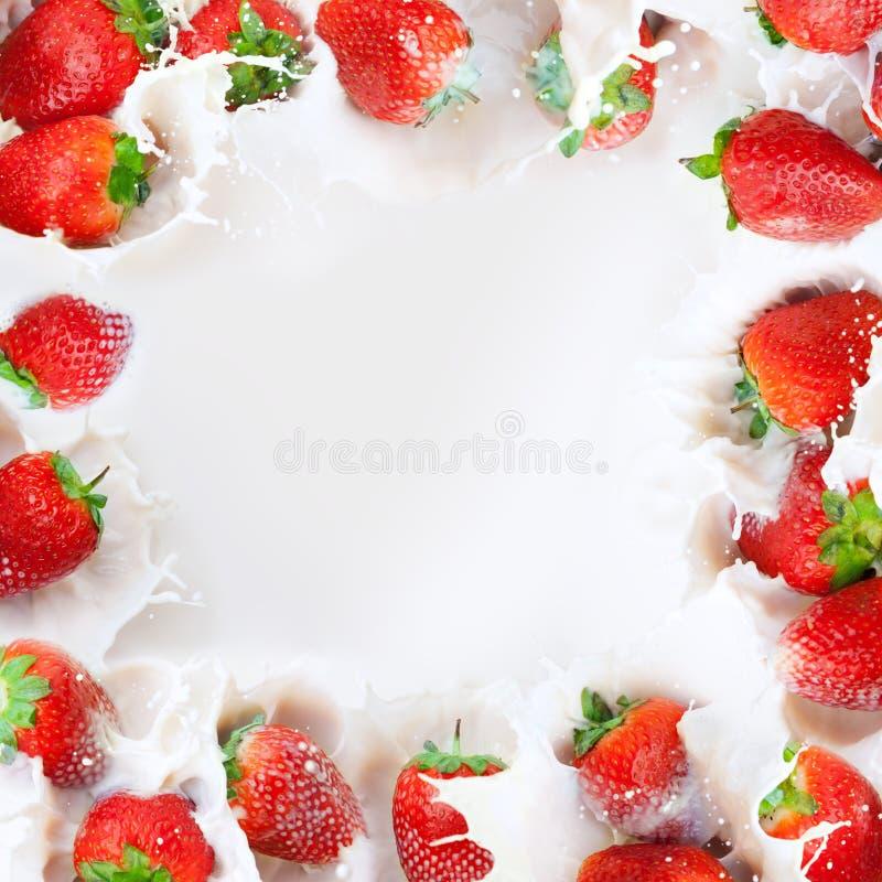 Strawberries splashing into milk frame stock image