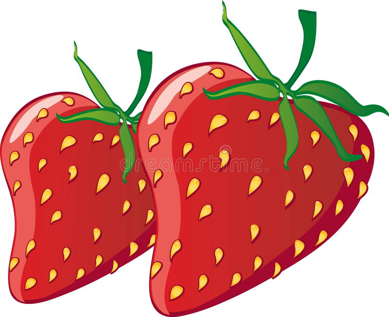 Strawberries stock illustration