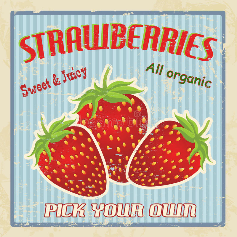 Strawberry vintage poster vector illustration