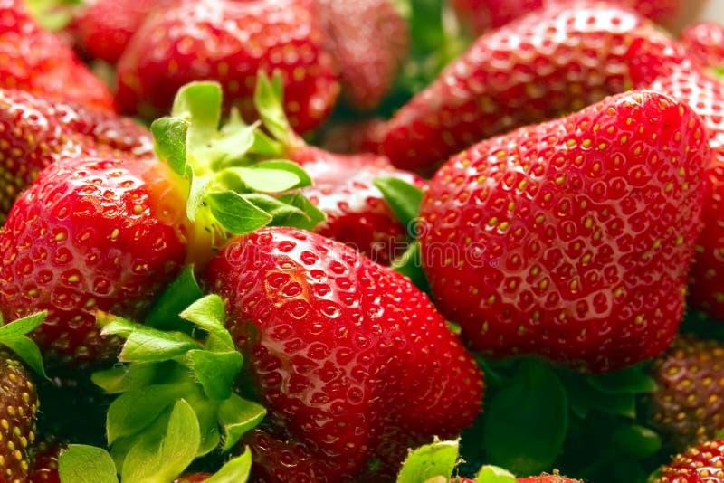 Strawberries vol. 3 stock image