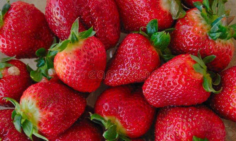 Strawberrry stock photos