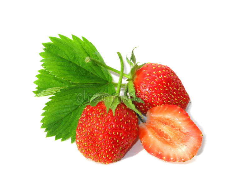 strawberry arkivbild
