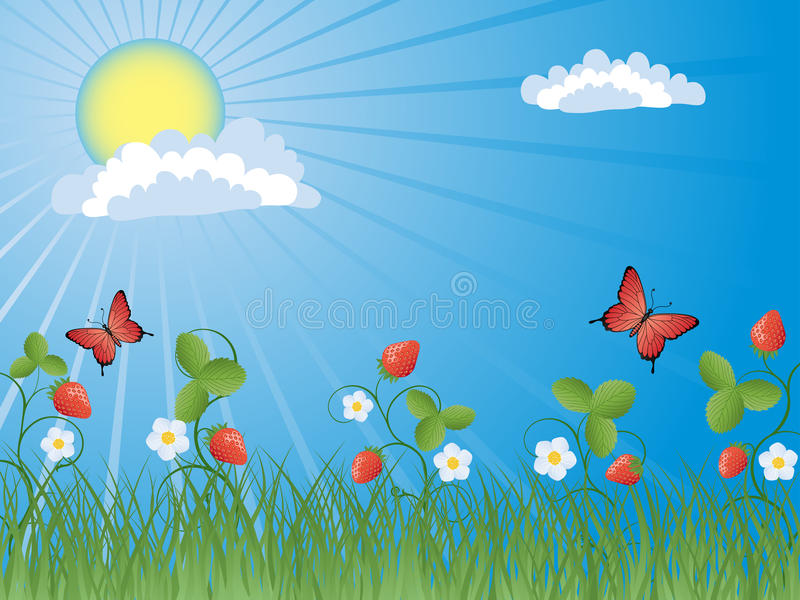 Download Strawberry stock vector. Image of floral, butterfly, shine - 13396298