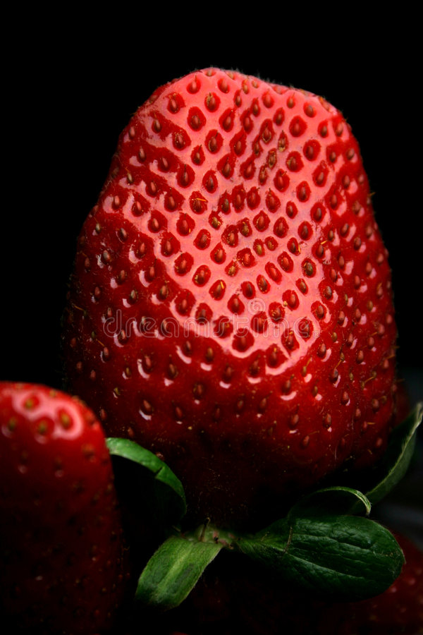 Free Strawberry Stock Image - 13861